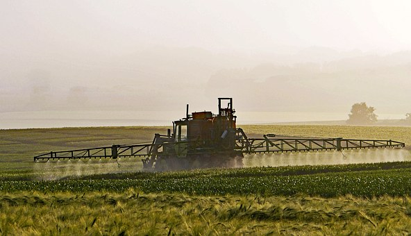 drizzling pesticides over cereals