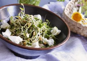sprout salad with cauliflower pickles
